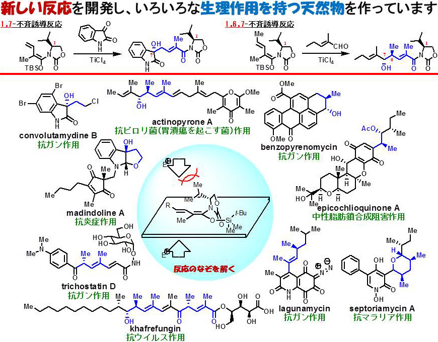 lab_hosokawa_01b